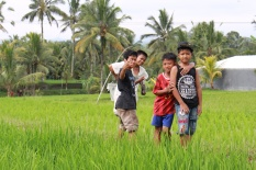 Children at play in rice fields