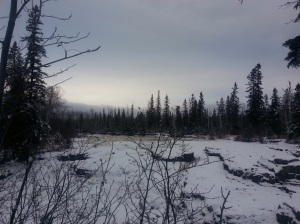 Top of the Temperance River